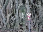 ワット・プラ・マハタートの仏像の頭.jpg